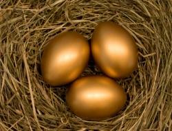 Dana Petroleum The goose that lays the golden eggs
