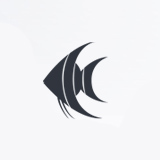 Angelfish Investments logo