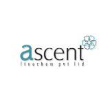 Ascent Exim India logo