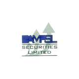BAMPSL Securities logo