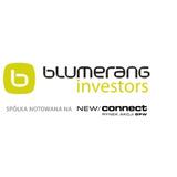 Blumerang Investors SA logo
