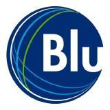 Blumetric Environmental Inc logo