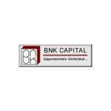 BNK Capital Markets logo