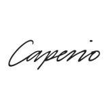 Caperio Holding AB logo