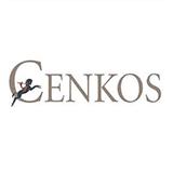 Cenkos Securities logo
