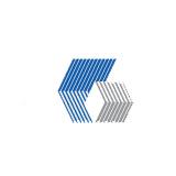 China Oriental Co logo
