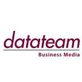 Data Team logo