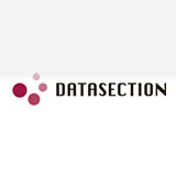 Datasection Inc logo