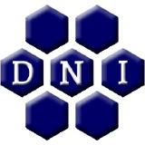 DNI Metals Inc logo