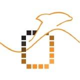 Dolphin Integration SA logo