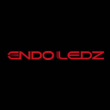 Endo Lighting logo