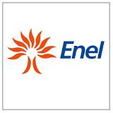 Enel SpA logo