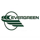 Evergreen International Holdings logo