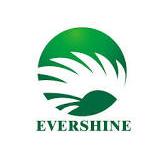 Evershine Group logo