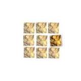 Evolving Gold logo