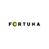 Fortuna Entertainment NV logo
