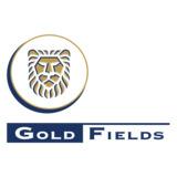 Goldfields International Inc logo