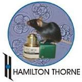 Hamilton Thorne logo