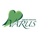 Hikari Heights-Varus Co Ltd logo