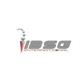 Ibsg International Inc logo
