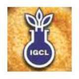 India Gelatine And Chemicals logo