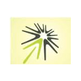 Legend Strategy International Holdings logo