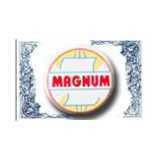 Magnum Ventures logo