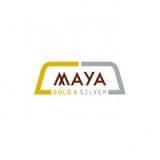 Aya Gold & Silver Inc logo