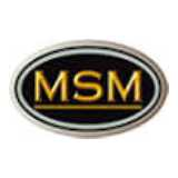 MSM International logo