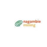 Nagambie Resources logo