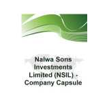 Nalwa Sons Investments logo