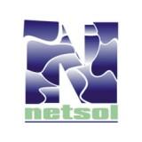 NetSol Technologies Inc logo