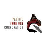 Pacific Iron Ore logo