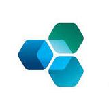 Pavillon Holdings logo