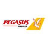 Pegasus Hava Tasimaciligi AS logo