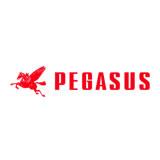 Pegasus Sewing Machine Mfg Co logo
