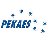 Pekaes SA logo