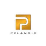 Pelangio Exploration Inc logo