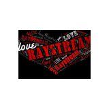 Raystream Inc logo