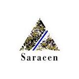Saracen Mineral Holdings logo