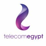 Telecom Egypt Co SAE logo