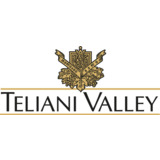 Teliani Valley Polska SA logo