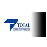 Total Energy Services Inc logo