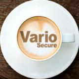 Vario Secure Inc logo