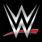 World Wrestling Entertainment Inc logo
