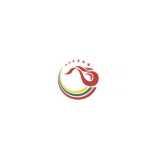 Central Development Holdings logo
