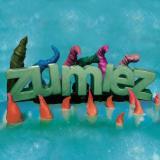 Zumiez Inc logo